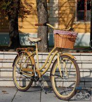 Egyedi Cruiser Női Kerékpár  1sp / 3 sp - Krem - Kave