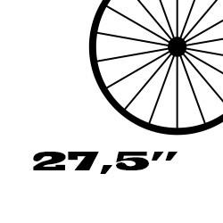 "27,5"" Coll (MTB)"