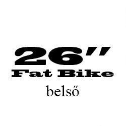 26 Coll Fat Bike