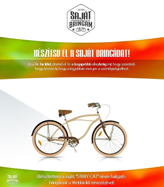 Férfi Cruiser kerékpár - Egyedi Cruiser kerékpár